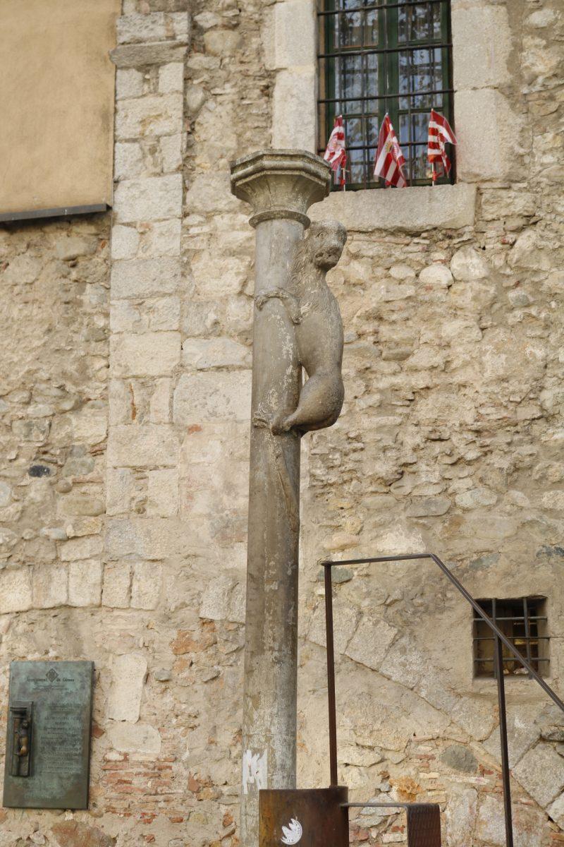 Lion Girona