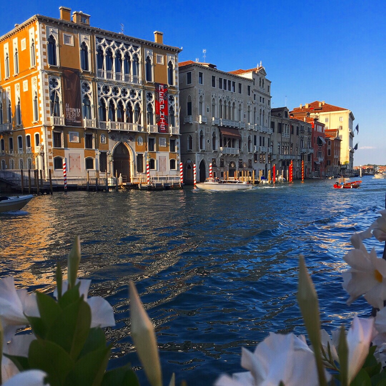 Grand Canal venice in the late afternoon. If you could fly anywhere in the world where would you go?