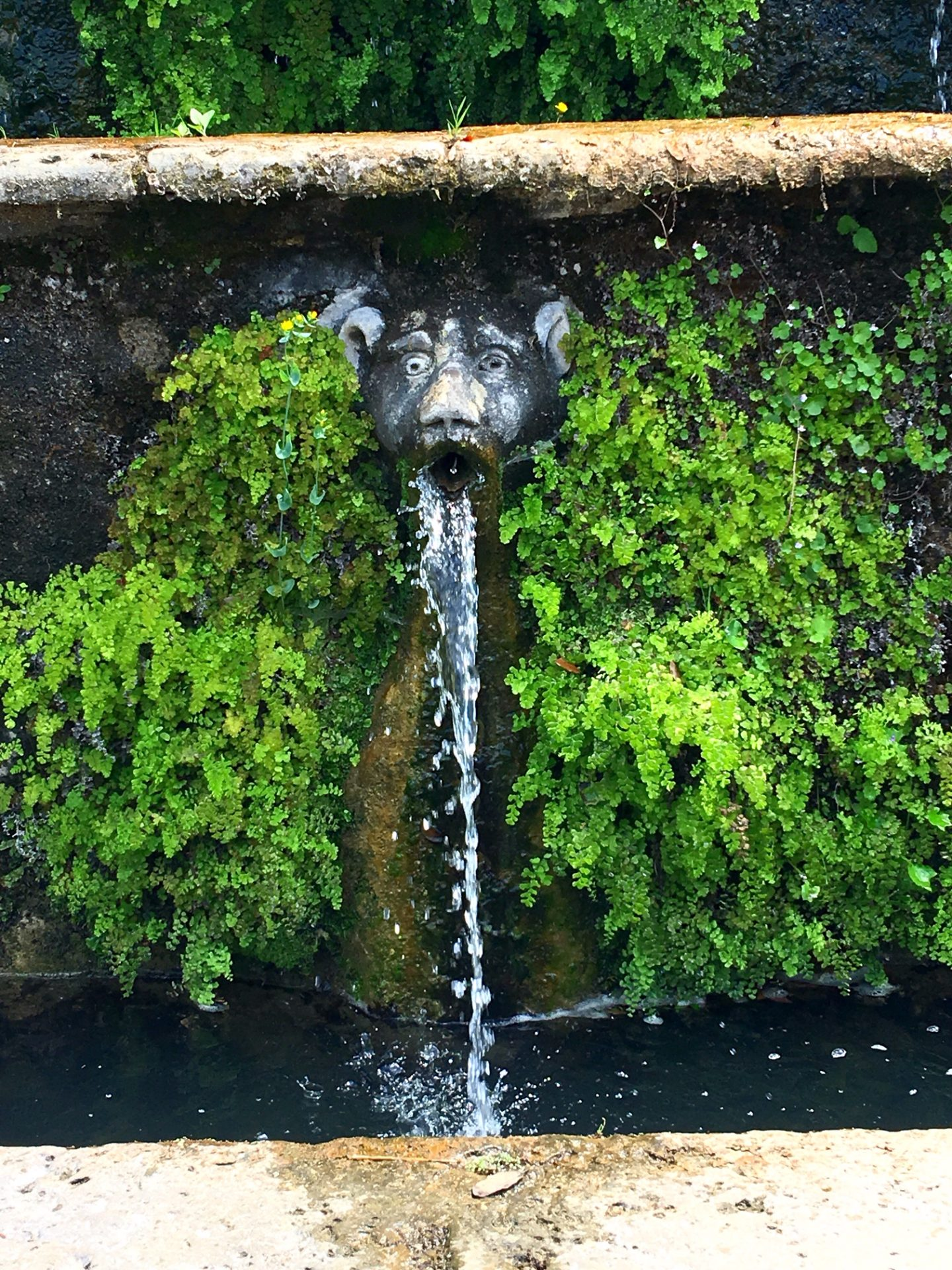 Villa d'Este Tivoli gargoyle fountain close up