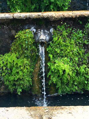 Villa d'Este Tivoli gargoyle fountain close up