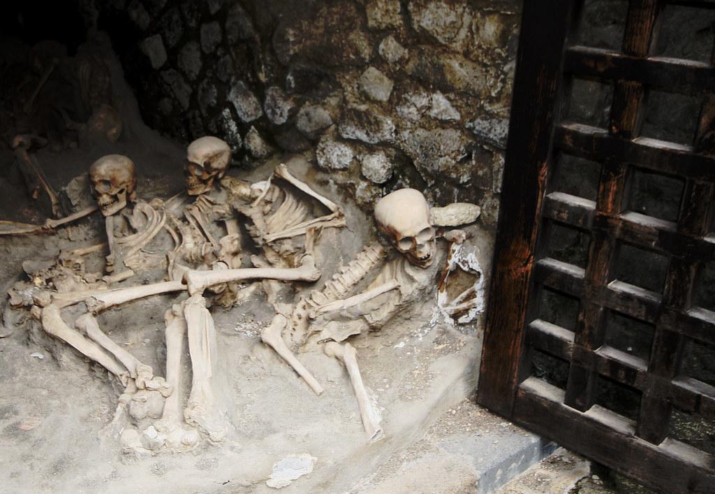 skeletons at herculaneum