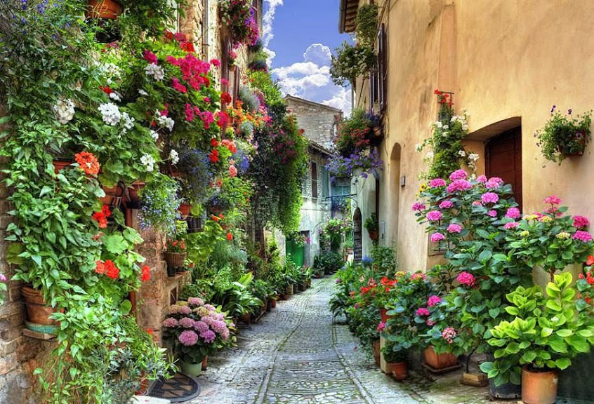 Spello Umbria flowers cobblestoned street